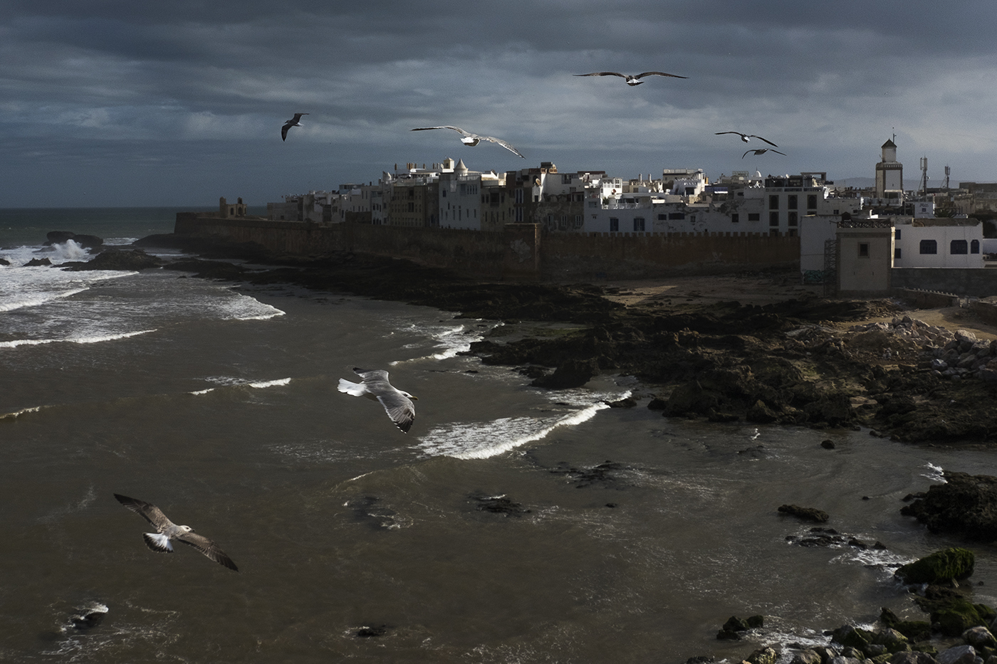 Essaouira, 2016. © Luís Rocha/MEF