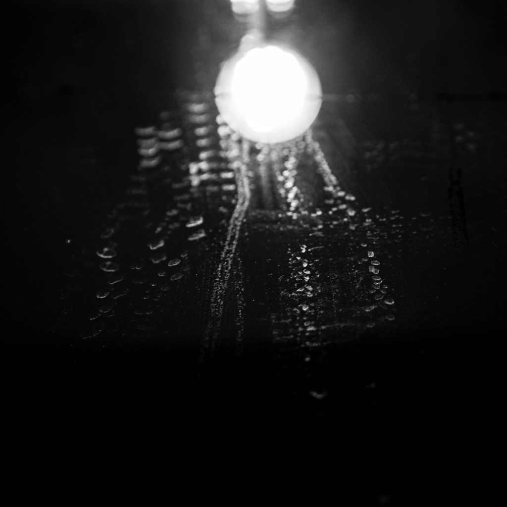 © Inês Valente | Em busca de Luz